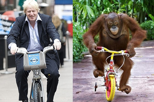"Boris on a London ""Boris Bike"" and an orangutan mimics."