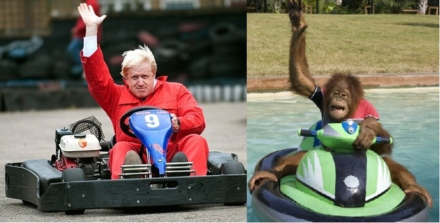 Boris rides a bumper boat, the primate has wheels.