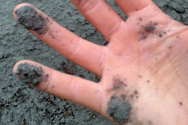 Mt. Tongariro: Ash on someone's hand. Photo: 3News.co.nz