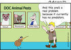 Doc Animal Pests