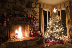 Christmas tree guide Sean Plunket