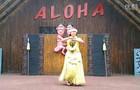 Aloha Maorish display