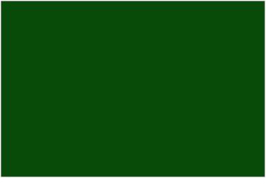 Image of the old Libya flag.