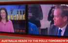 australia / politics / laurel irving