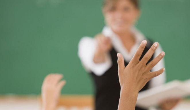 teachers / schools